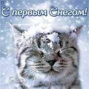 Александр 28 Ростов-на-Дону