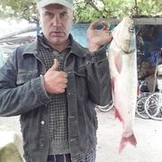 Виталий Висягин 42 года (Дева) Майский