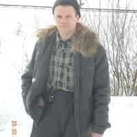 владимир, 41 год, Дева, Вельск