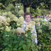 Ольга 63 года (Овен) Наро-Фоминск