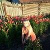 Маргарита, 50, г.Казань