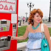 полина, 51 год, Водолей, Нижний Новгород