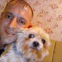Андрей, 38 лет, Дева, Тула