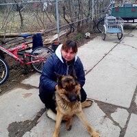 Светлана, 37 лет, Овен, Раздольное