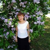 Светлана, 57 лет, Скорпион, Ярославль