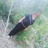 Алина, 30, г.Караганда