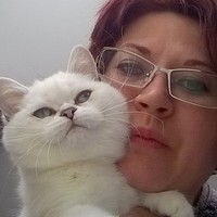 Наталья, 44 года, Овен, Кольчугино