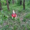 Елена, 34, г.Бобруйск