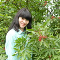 Светлана, 41 год, Дева, Челябинск