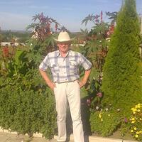 георгий, 83 года, Лев, Воронеж
