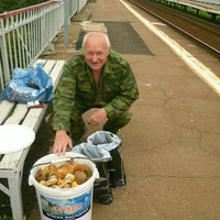Валерий, 61 год, Дева, Москва