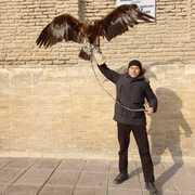Марат Бекбосынов 44 Туркестан