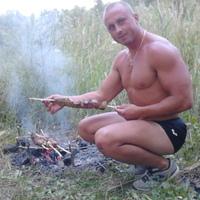 Николай, 39 лет, Стрелец, Киев