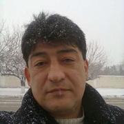 Loyik 43 Ташкент