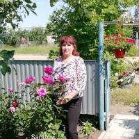 Галина, 55 лет, Скорпион, Саратов