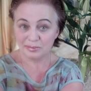 Лилия 59 Белгород