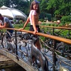 Ольга, 18, Добропілля