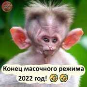 Елена 36 Ростов-на-Дону