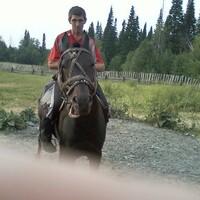 Владимир, 46 лет, Дева, Березовский