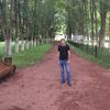 xaris, 28, г.Ереван