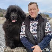 Вячеслав, 43 года, Стрелец, Массандра
