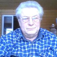 Валерий ал Парыгин, 59 лет, Близнецы, Покров