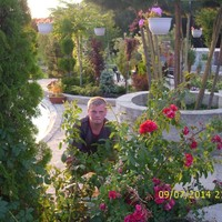 МИХАИЛ, 33 года, Водолей, Тула