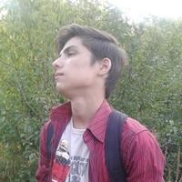 Денис, 19 лет, Лев, Луганск