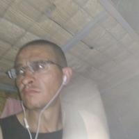 Дима, 42 года, Телец, Москва