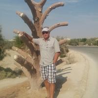 Андрей, 51 год, Скорпион, Воронеж