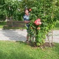 Ольга, 46 лет, Овен, Томск