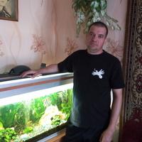 Aлексей, 45 лет, Водолей, Кимовск