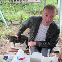 владимир, 55 лет, Близнецы, Санкт-Петербург