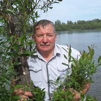 Виктор Владимирович, 60 лет, Стрелец, Черемхово
