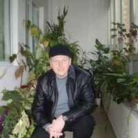Sven, 50 лет, Лев, Сочи