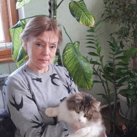 Нинель, 62 года, Рыбы, Казань