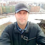 Дмитрий 41 Тайга