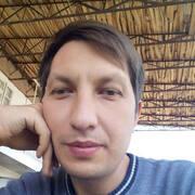 Марлен 32 Ташкент