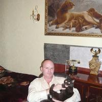 Алексей, 49 лет, Дева, Москва