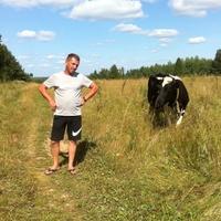 Дмитрий, 42 года, Телец, Иваново