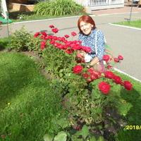 Амира, 65 лет, Дева, Пермь