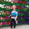 Валентина Николаевна, 67, г.Фокино
