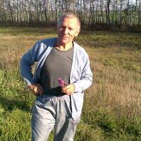 Александр, 71 год, Лев, Саратов