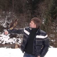 Антон, 36 лет, Телец, Курск