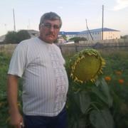 Давыд 67 Барнаул