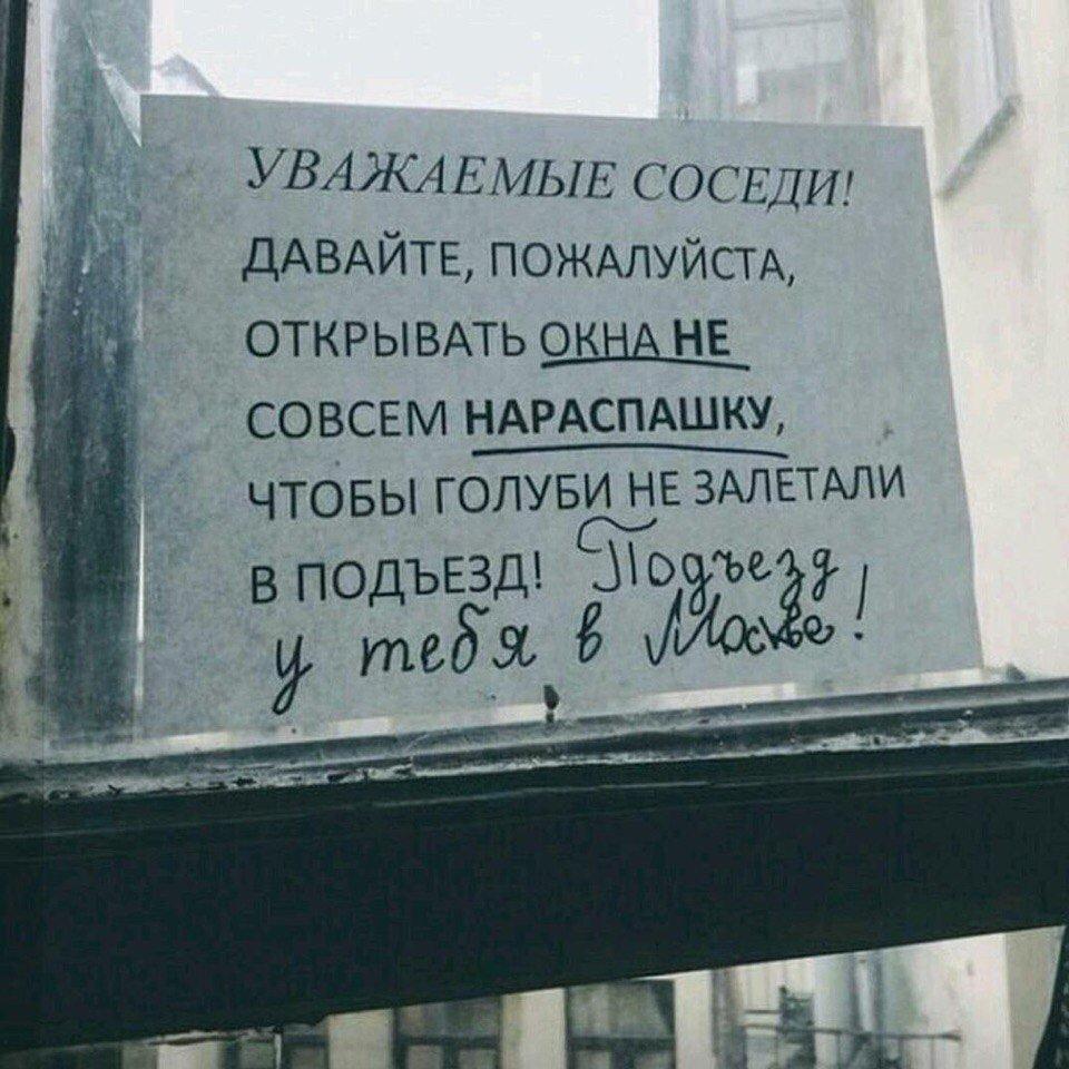 Новости из культур-мультурной столицы.. Посетители библиотеки подрались из-за стула в Санкт-Петербурге YPU1dChDMe