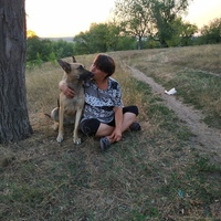 Лариса, 50 лет, Рак, Луганск
