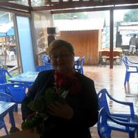 Светлана, 63 года, Рак, Казань