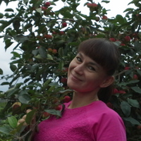 Олеся, 46 лет, Стрелец, Иркутск