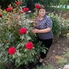 Елена, 58, г.Покровск